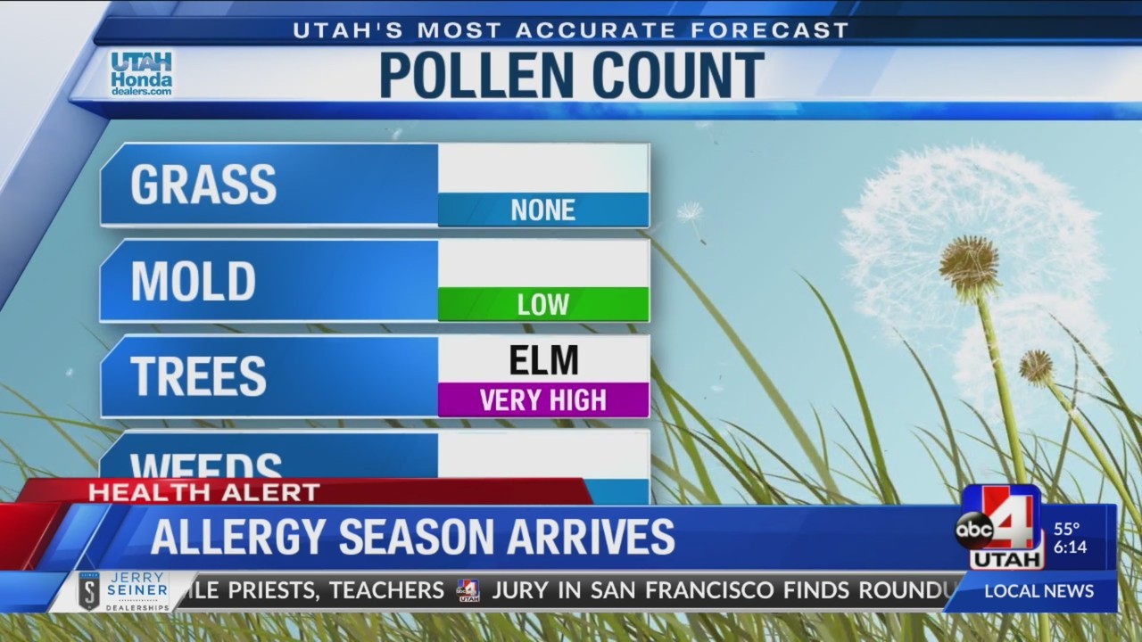 Allergy season beats the arrival of spring